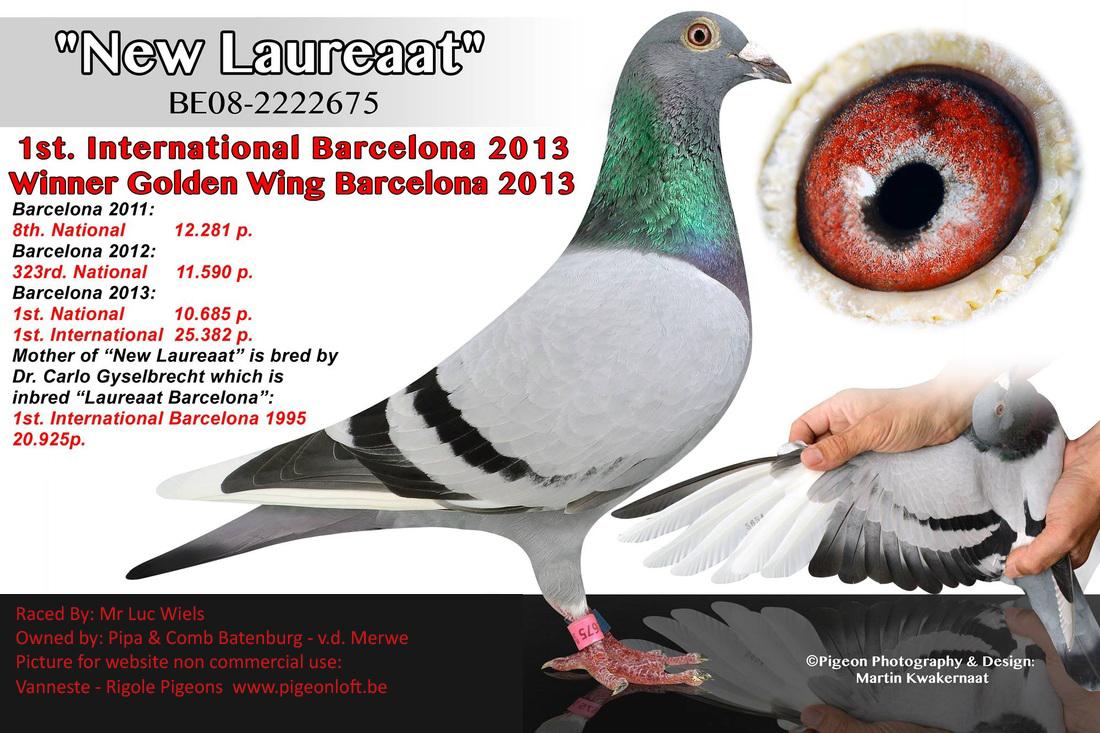 inbred new laureaat B19-2015462