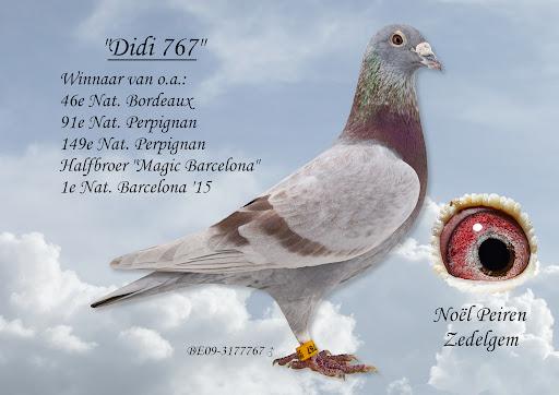 Didi 767 Peiren Noël